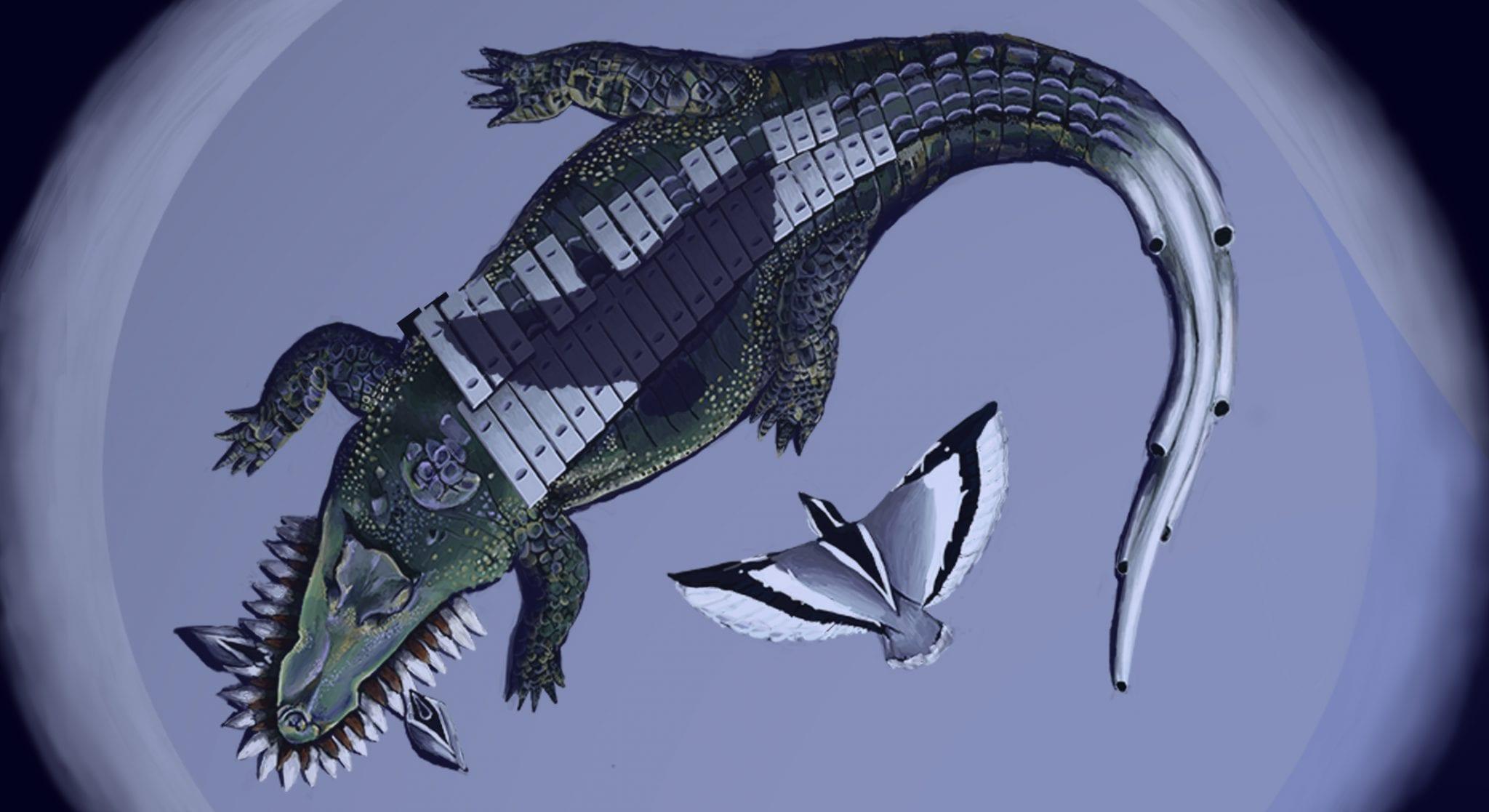 croc-piano-res-72-(cover-photo)