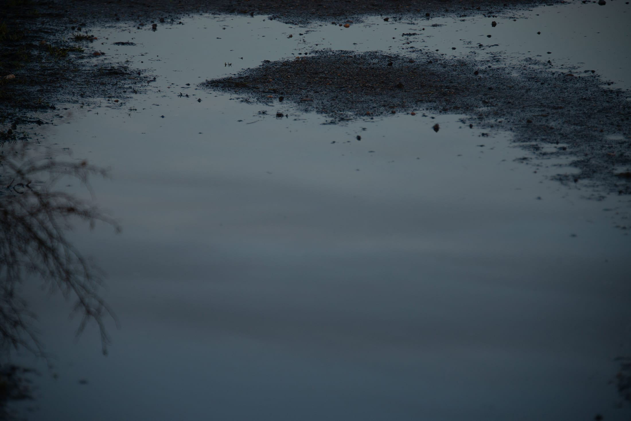 Close up of puddle and gravel
