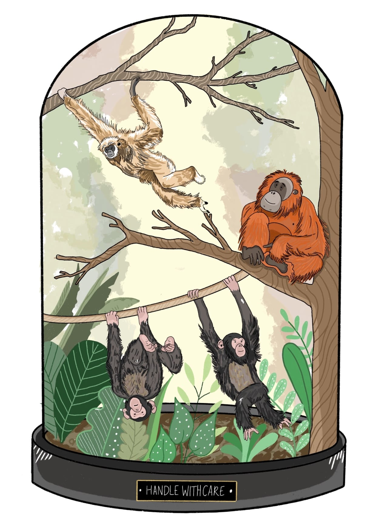 An image reflecting the need to protect the rainforests.